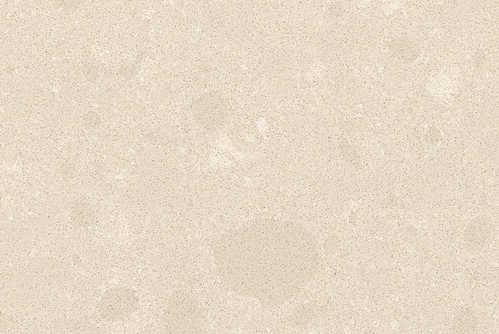 Buttermilk 42201